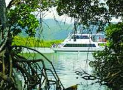Cairns Harbour Cruises - Accommodation Find