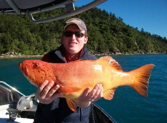 Gone Fishing by Coral Sea Fishing Charters Airlie Beach - Accommodation Find